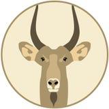 山羊-例证 库存照片