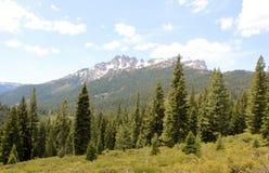 山脉加利福尼亚 库存照片