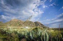 山脉在La Fabriquilla附近的de加塔角 免版税库存照片