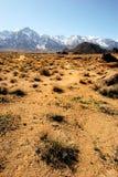 山脉春天 库存图片