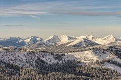 山脉的冬天森林 免版税库存照片