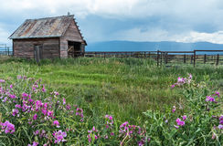山脉谷大农场 库存照片