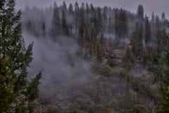 山脉雾 图库摄影