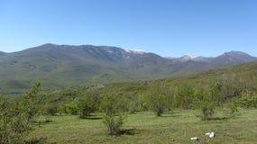 山脉Babugan,克里米亚 免版税库存照片