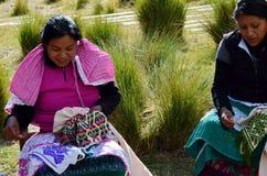 山脉Chincua,米却肯州,墨西哥, 1月14日:土产妇女缝合衣裳 免版税库存图片