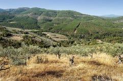 山脉de法国的山 库存图片