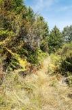 山脉de法国的道路 库存图片