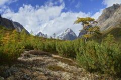 山脉Kodar 免版税库存图片