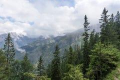 山脉wetterstein的看法在巴法力亚阿尔卑斯 免版税库存图片