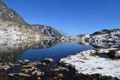 山自然蓝天木头覆盖湖反射 免版税库存照片