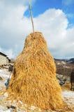 山草甸的干草堆 免版税库存图片