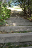 山行迹步在春天 免版税图库摄影