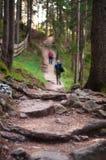 山行迹的两个远足者 免版税库存照片