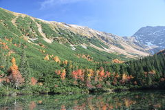山西Tatras 库存照片
