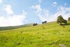 山谷和峰顶的看法 免版税库存图片