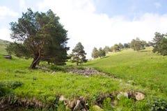 山谷和峰顶的看法 免版税图库摄影