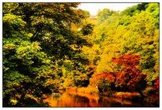 山谷的被照亮的河 免版税库存照片
