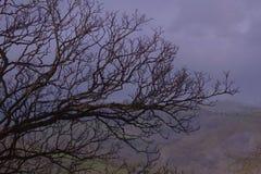 山谷的黑暗 库存照片