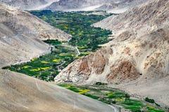 山谷:高山是褐色,河弯沿峡谷的底部和沿河床许多树,领域 库存图片