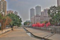 山贝河元朗在香港 免版税库存图片