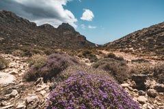 山走 远足和在克利特,希腊海岛上的游人路线  对著名Balos海滩的方式在热 库存图片