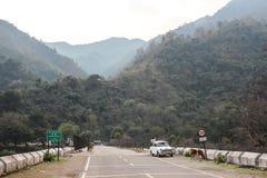 山路和树在山 免版税库存照片