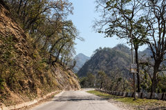 山路和树在山 免版税库存图片
