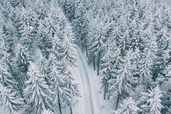 山路在多雪的冬天 图库摄影