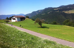 山路在意大利阿尔卑斯 免版税图库摄影