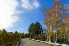 山路在秋天 免版税库存图片