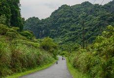山路在越南北部 库存照片