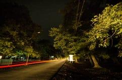 山路通过森林在满月夜 深蓝天空风景夜风景与月亮的 阿塞拜疆 Masalli 免版税库存照片