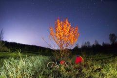登山车在一棵开花的树下在晚上 库存照片