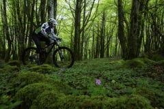 登山车在森林里 免版税库存图片