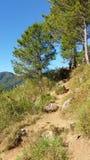 山远足的边足迹 图库摄影