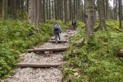 山道路的- Tatra,波兰背包徒步旅行者妇女。 免版税库存图片