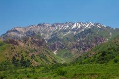 山阿尔卑斯 库存照片