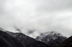 山雪与树的风景在Ilisu,加赫阿塞拜疆,大高加索的自然和雾 图库摄影