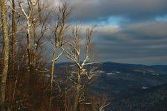 山顶视图佛蒙特冬天 免版税库存图片