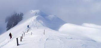 山顶面随风飘飞的雪 免版税图库摄影