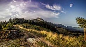 山顶 图库摄影