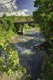 山风景、森林和快速的山河 与山河的美好的风景 免版税库存图片