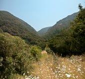 山风景。 免版税图库摄影