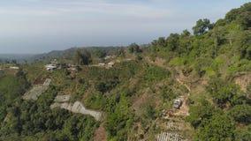 山风景农田和村庄巴厘岛,印度尼西亚 股票视频