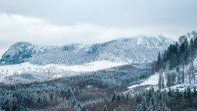 山风景在一个多云冬日 图库摄影