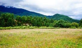 山风景在不丹 库存图片
