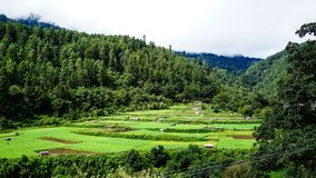 山风景在不丹 免版税图库摄影