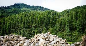 山风景在不丹 库存照片