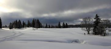 山风景在冬天 库存图片