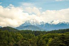 山风景在喀尔巴阡山脉在夏天 免版税图库摄影
